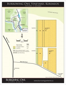 BOV_1763_Vineyard_Map_Keremeos_HR