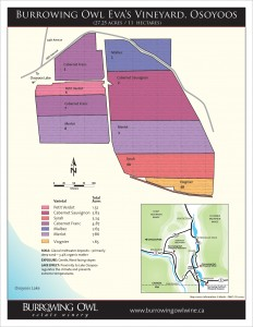 BOV_1763_Vineyard_Map_Osoyoos_HR