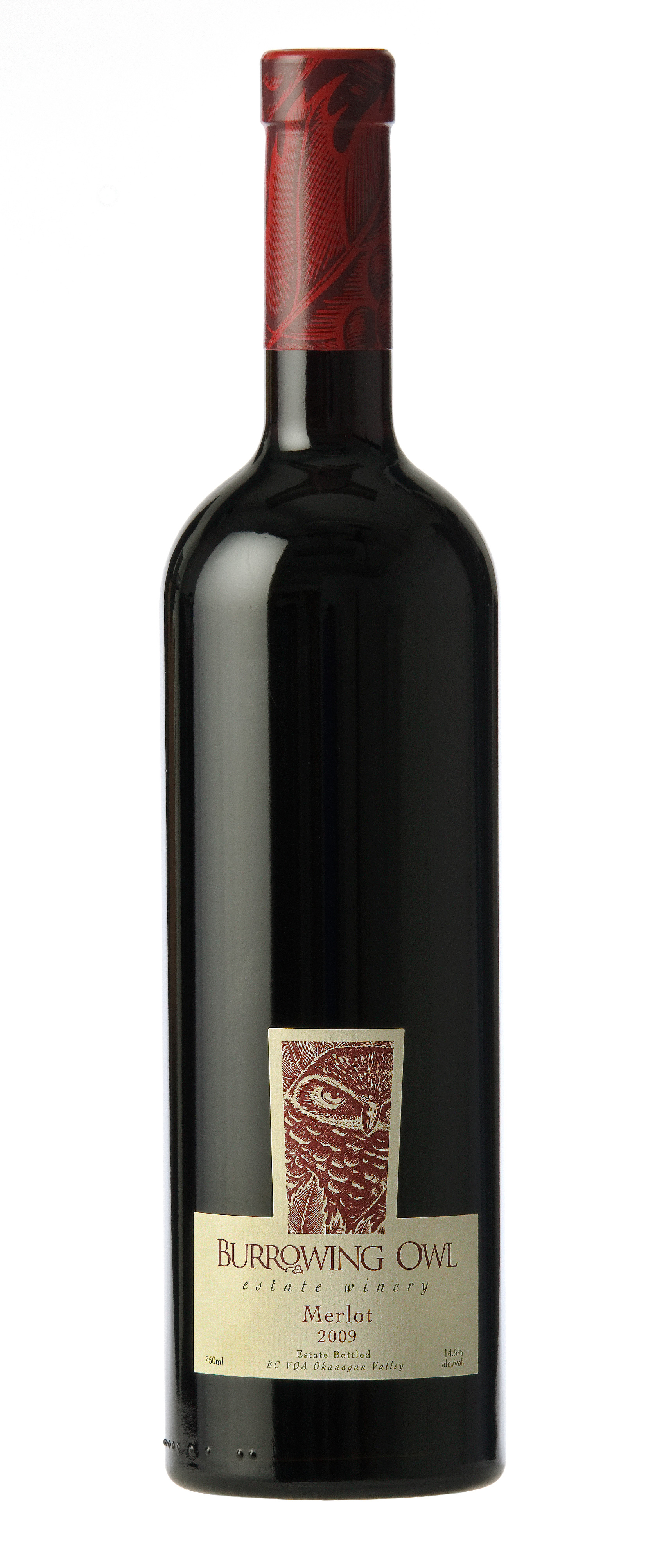 Merlot2009Bottle_Large_2